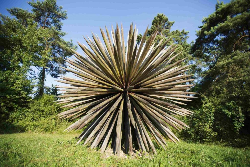 Oeuvre du vent des forêts - Guillaume Ramon